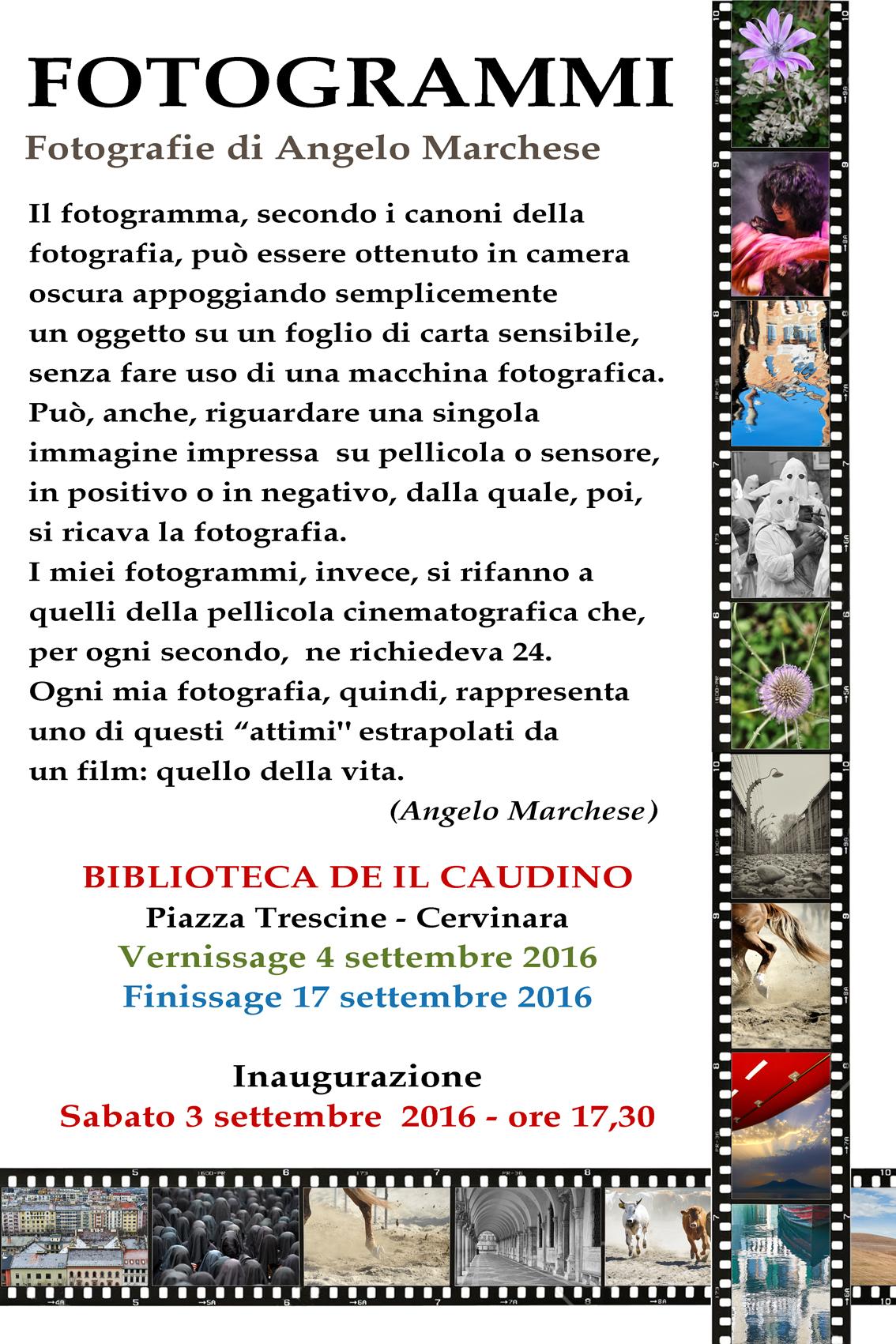 I fotogrammi di Angelo Marchese in mostra
