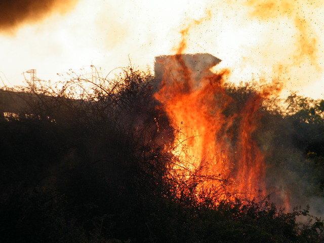 Regione Campania. Dichiarazione dello stato di grave pericolosita' per gli incendi boschivi