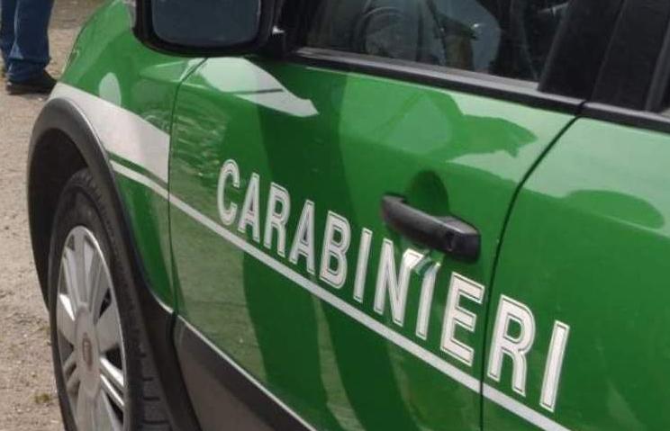 Ferragosto sicuro: i consigli dei Carabinieri