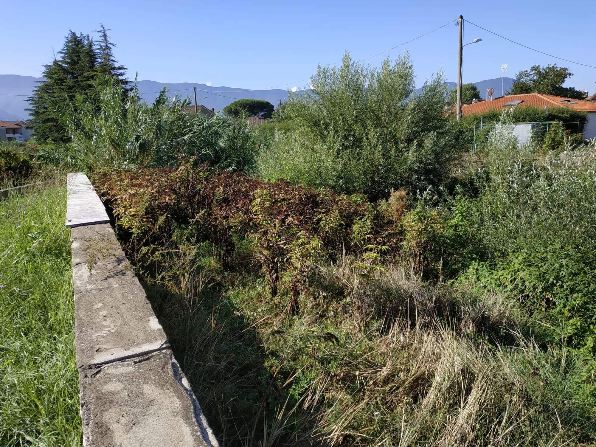 Montesarchio, Tesa: Comune avvia procedura per bando lavori