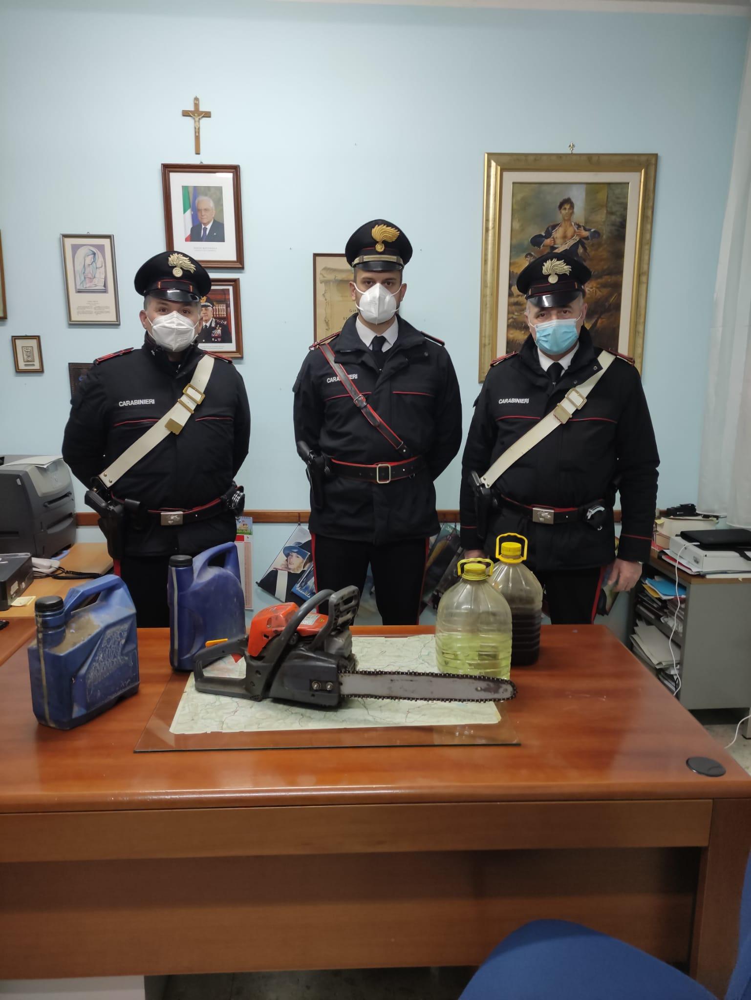 Arpaia, ruba legna: arrestato dai Carabinieri