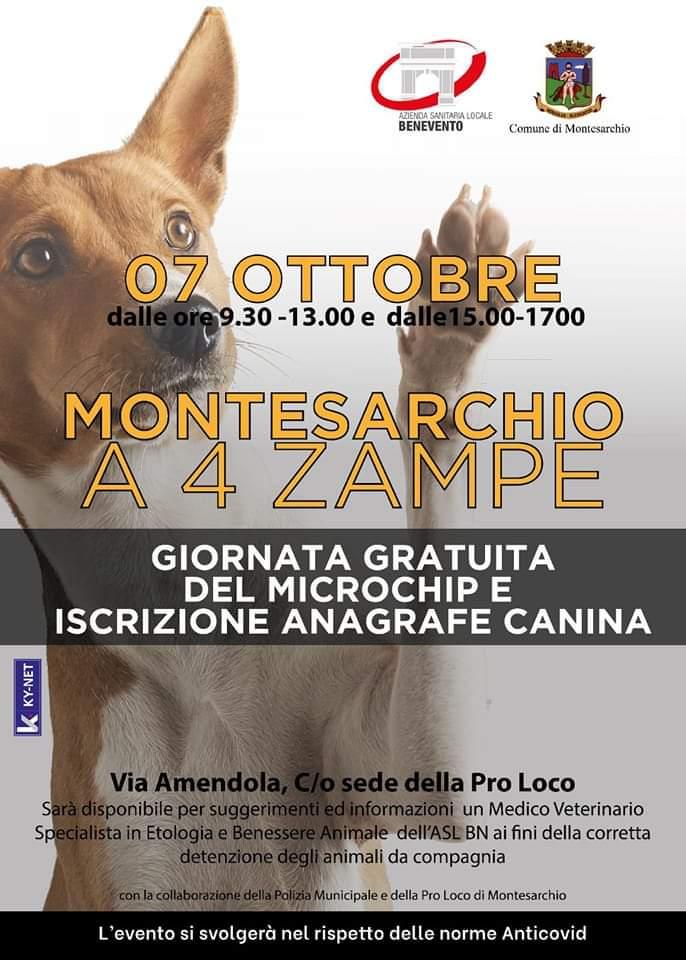Montesarchio, cani: Giornata gratuita di microchippatura